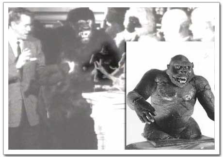 Desi Handles the Kong